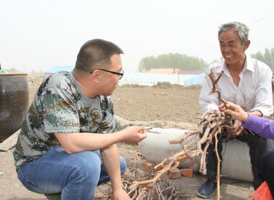 镇赉县全面推进庭院经济发展